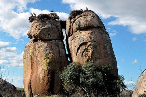 Cegonha ninhos em rochas do Tesouro